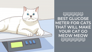Best Glucose Meter For Cats