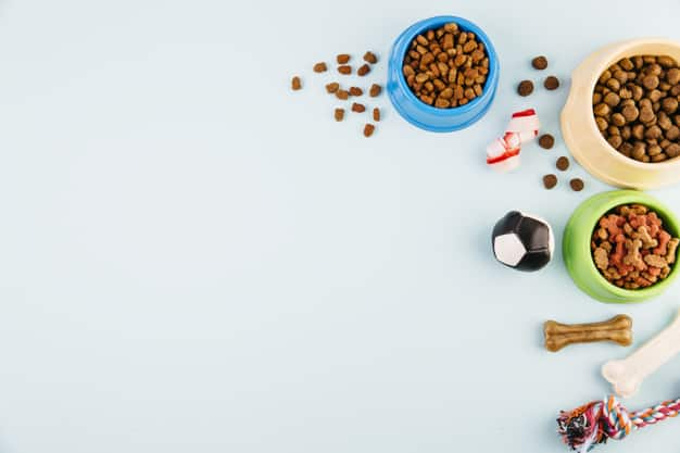 best diabetic dog foods